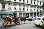 キューバ ハバナ 馬車