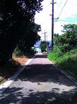 八重山旅行記・2006年8月 石続・波照間・西表・鳩間・小浜・竹富 鳩間の桟橋へと向かう道