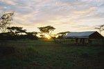 タンザニア・セレンゲティの朝日
