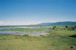 タンザニア・マニヤラ湖