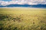 タンザニア・ンゴロンゴロの湖1