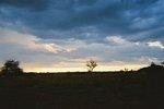 タンザニア・セレンゲティの夕日