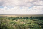 タンザニア・セレンゲティの平原
